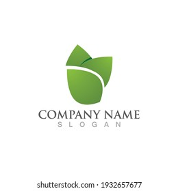 green leaf ecology nature logo element vector