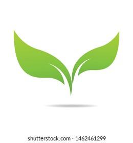Green Leaf Icon design Vector Illustration