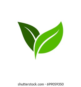 Green leaf icon vector logo. Two leaf ecology icon