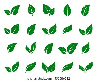 leaf vector stock illustrations images vectors shutterstock rh shutterstock com vector leaf springs vector leaflet