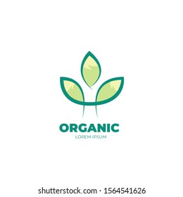 Green leaf modern logo vector design. nature icon with flat and simple style. For business branding and trademark. High resolution EPS 10