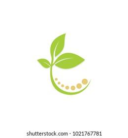 green leaf plant beauty nature vector logo