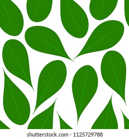Green leafs seamless vector pattern, on white isolated background. Texture for web and print design, cover, poster. EPS 10.