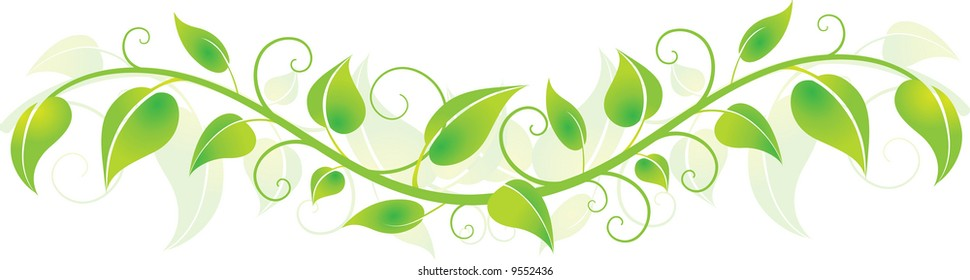 Vine Spring Stock Vectors Images Vector Art Shutterstock