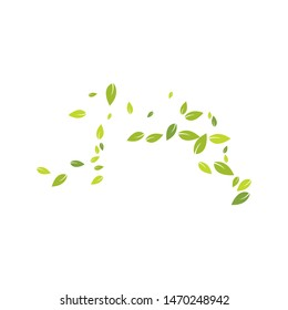 Green leaves background ilustration template