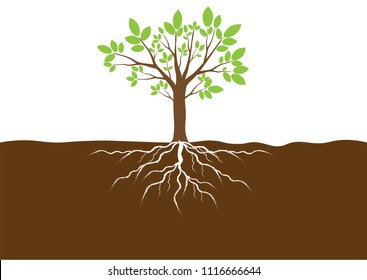 Green Leaves and brown Tree with Roots in the soil. Vector Illustration.EPS10.