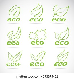 Green leaves design. Ecology icon set. Green eco icons badge vector.