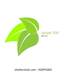 Green leaves. Eco icon green leaf vector illustration isolated