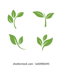 Green leaves icon set isolated on white background. Vector illustration.