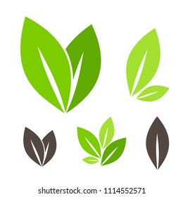 Green leaves.  Icons collection. Vector graphic design elements.