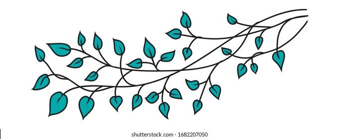 Grüne Blätter im Design der Vektorillustration, handgezeichnete Baumzweige-Dekoration in hübschen Frühlings- oder Sommermustern für Grafikprojekte