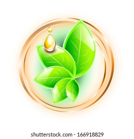 Green leaves in rings, with yellow oil drops, EPS 10, isolated
