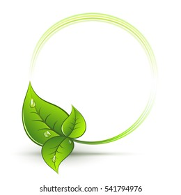 Green leaves round frame with white copy space vector emblem.