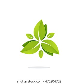 Green leaves in a swirl triangle logo. Vector ecology elements for banner, presentation, web page, card, labels or posters.