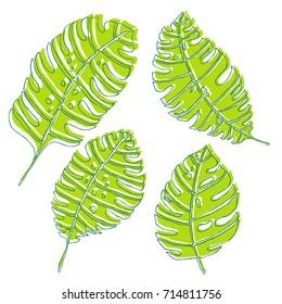 Green line leaves