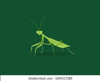 Green mantis on green background. Vector flat illustration. Large predator insect.