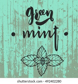 green mint art lettering with fresh mint leaves on wooden background