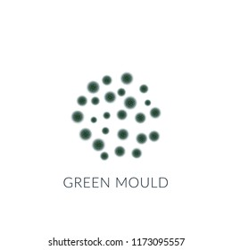 Green mold isolated on white background.