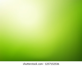 Green nature blurred background.   Abstract gradient backdrop with light space for text. Vector illustration. Ecology concept for your graphic design, banner or poster