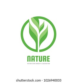 Green nature concept illustration. Sprout and leaves - vector creative logo. Organic sign. Agriculture symbol. Design element