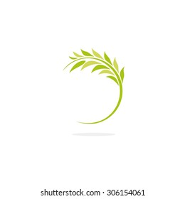 Green olive branch. Fresh leaves. peace and a symbol of fertility. Harvesting vector logo.
