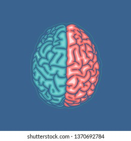Green and orange hemispheres human brain in top view flat icon drawing illustration isolated on deep blue background