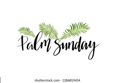 Green Palm leafs vector icon. Vector illustration for the Christian holiday. Palm Sunday handwritten phrase. Calligraphy quote on white background