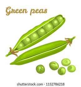 Green peas isolated on white background. Vector illustration of fresh food in a flat style. Icon, banner.