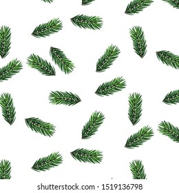 Green pine branches and leaves on white background. Vectorized watercolor drawing. Pine leaves seamless banner.