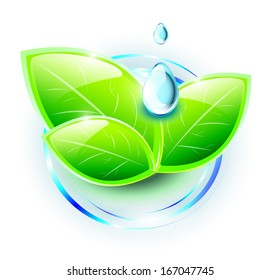 Green plant with blue drops on abstract water ripples, EPS 10, isolated
