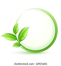 green plant concept