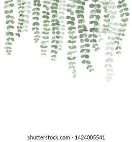 Green Plant Hanging Isolated on white background - vector