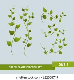 Green Plant Vines - Set 1 of 3