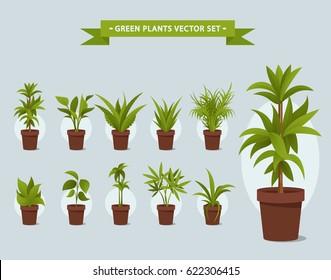 Green Plants in Pots - Vector Set