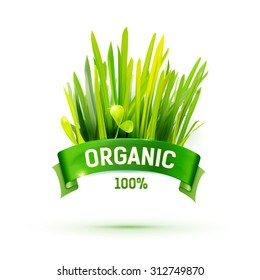 Green ribbon with Organic emblem and grass illustration. Creative promotional vector banner. Eco friendly food logo design. Farm product label. Realistic grass