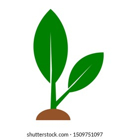 green sapling seed icon; seeding symbols, new idea concept isolated on white background. vector illustration