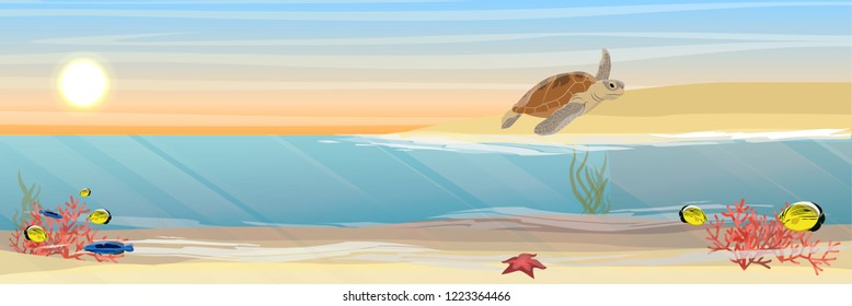 Green sea turtle out on the sandy coast of the island. Tropical underwater landscape. Warm water. Coral reef with coral, sea sponges, sand and stones. Realistic Vector illustration of a sea life