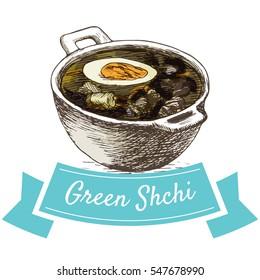 Green Shchi colorful illustration. Vector illustration of Russian cuisine.