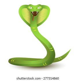 Green Snake. Angry cobra cartoon, isolated on white