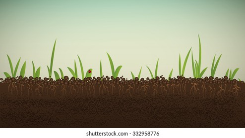 green spring sprout with roots and red ladybug in the soil, spring come soon vector