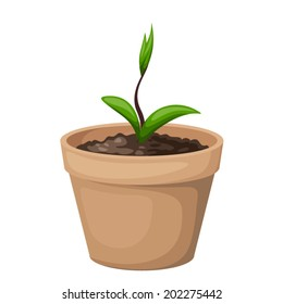 Green sprout with leaves in the clay flowerpot isolated on white. Vector illustration.