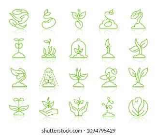 Green sprout thin line icons set. Outline vector monochrome web sign kit of seeds. Green plant linear icon collection includes flower, grass, leaves. Simple sprout symbol with reflection on white