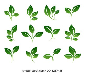 Green sprouts. Growing plants signs isolated on white background, vector sprouting shoots with green leaves symbols