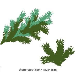 green spruce branch - Shutterstock ID 782544886