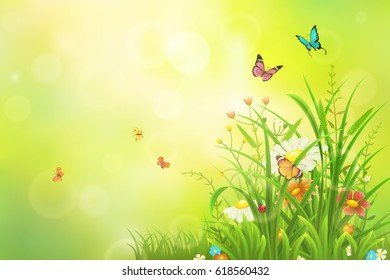 Green summer background with grass, flowers and insects