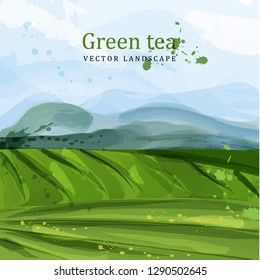 Green tea fields watercolor background Vector. Nature mountains views. Organic eco plantations