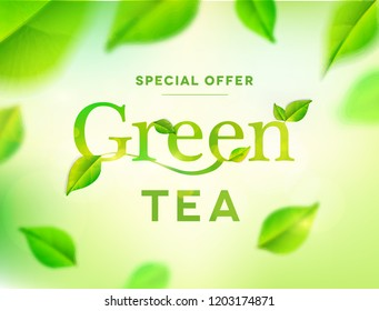 Green tea leaves on nature background. Green tea typo with leaves.