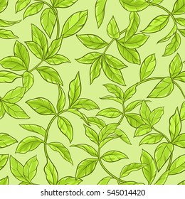 green tea leaves seamless pattern on color background
