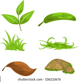 Green tea leaves and stone and grass isolated vector illustration