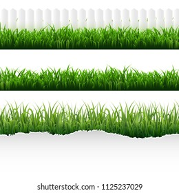 Green Torn Paper With Grass Set With Gradient Mesh, Vector Illustration